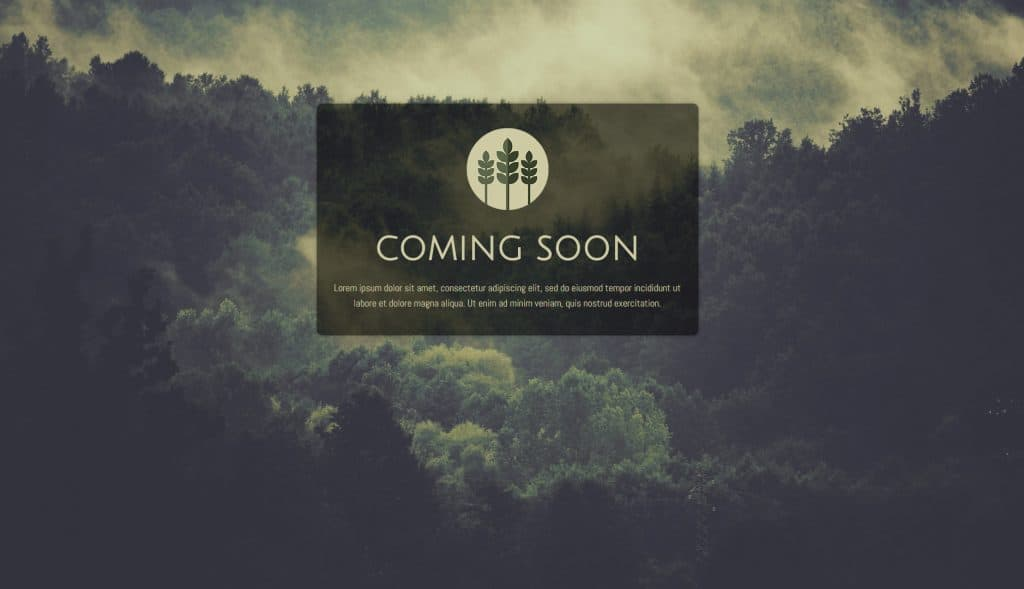 Coming Soon Example